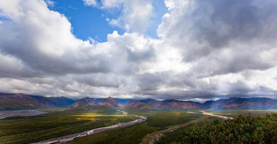 Denali National Park, Alaska. Photo via Flickr:blarrggg