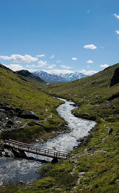 Beautiful Denali National Park, Alaska. Photo via Flickr:Vince Smith