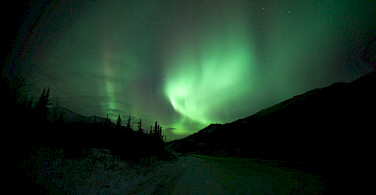 Aurora Borealis or Northern Lights aglow in Denali National Park, Alaska. Photo via Flickr:Malcolm Manners
