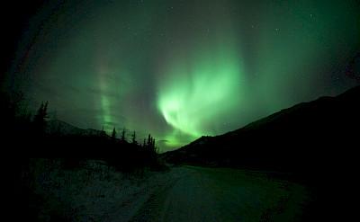 Aurora Borealis or Northern Lights aglow in Denali National Park, Alaska. Photo via Flickr:Malcolm Manners