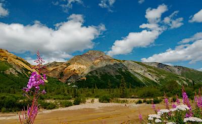 Sheep Mountain, Alaska. Photo via Flickr:Dave Bezaire