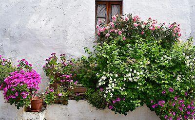 Alentejo, Portugal. Flickr:Jocelyn Erskine-Kellie