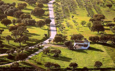 Region of Alentejo, Portugal. Flickr:Zoikoraki