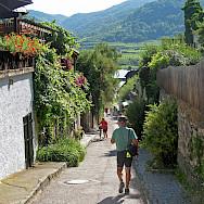 Vineyards along the Danube in Durnstein, Wachau Valley of Austria. Photo via Flickr:Don Heffernan