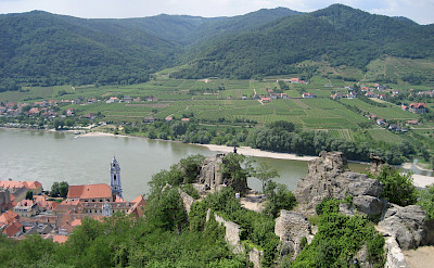 View from the Castle in Dürnstein overlooking the Wachau Valley with its vineyards. Flickr:Muppetspanker