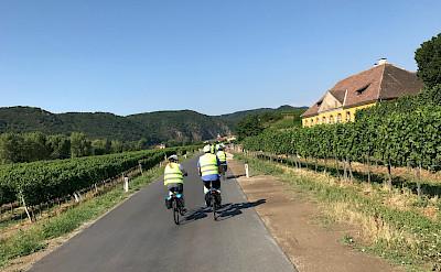 Biking near Pöchlarn in Lower Austria. Flickr:MoToMo