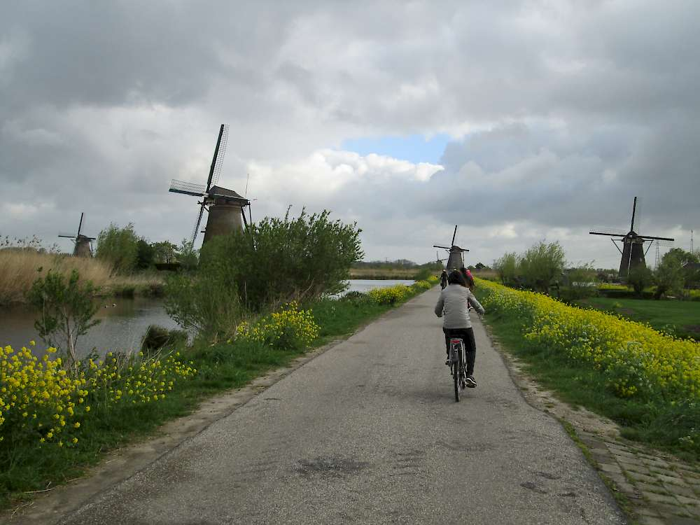 Bike path Kiderdijk