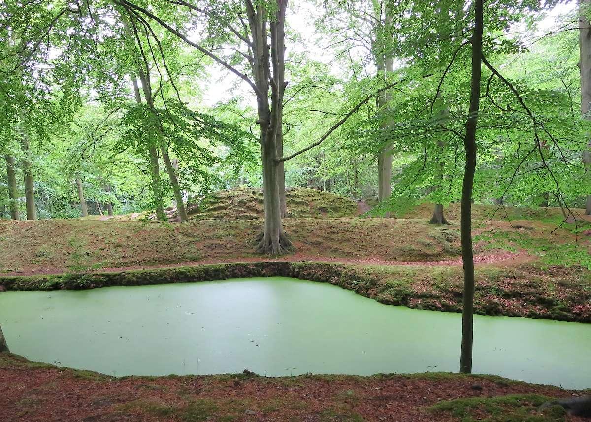 Park near Hague