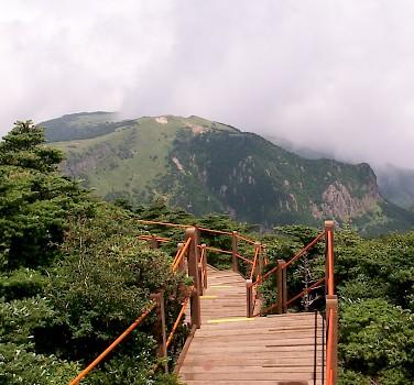 Damyang to Jeju Island