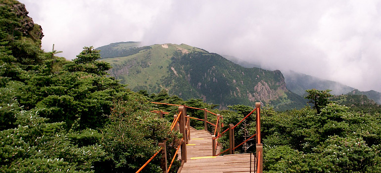 Hiking on Halla or Hallasan Mountain, Jeju Island, South Korea. Photo via Flickr:Sungsub Jang