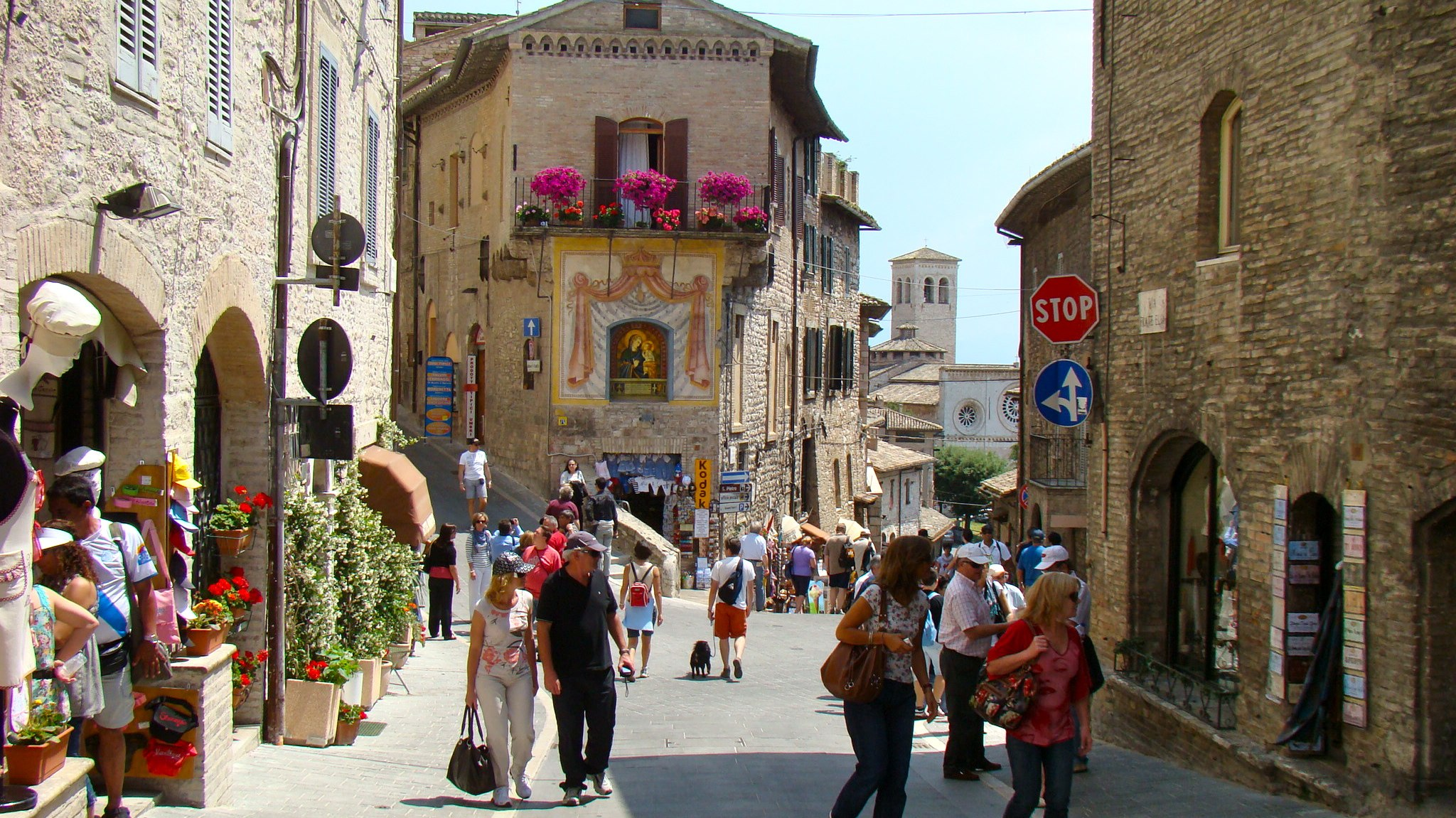 Guided Travel Tour Companies