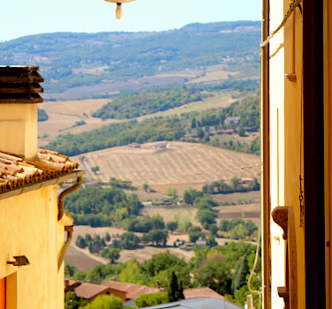 Florence to Rome - Guided Tour