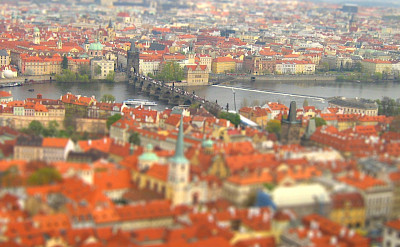 Prague's characteristic orange roofs. Flickr:Bjørn Giesenbauer