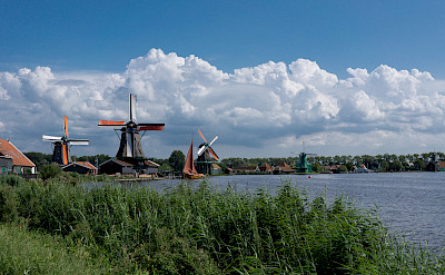 Bike path along the windmills in Zaandam, North Holland, the Netherlands. Flickr:kismihok