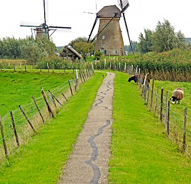 Bike paths and windmills in Dordrecht, South Holland, the Netherlands. Photo via Flickr:Dennis Jarvis