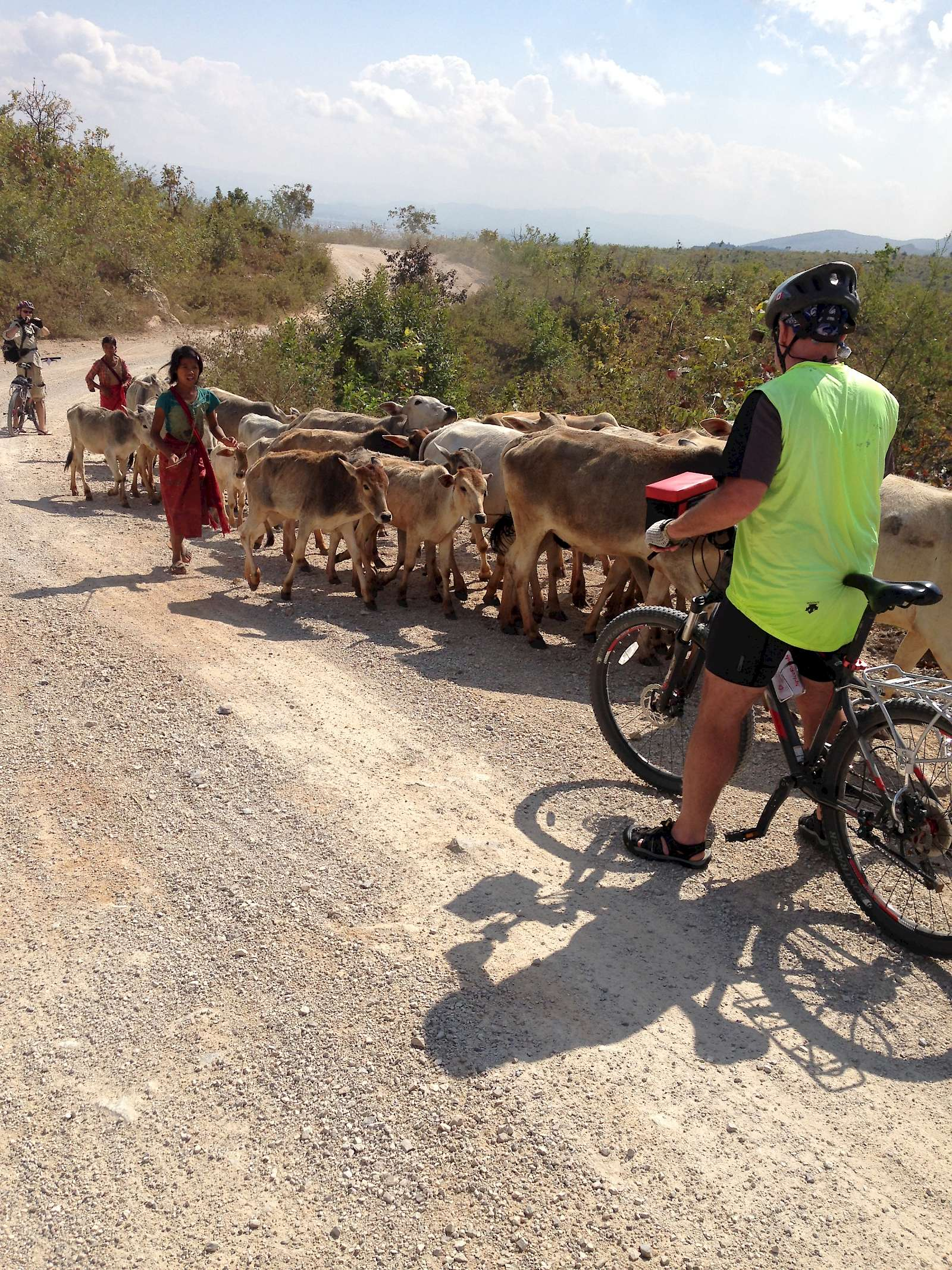 Road in Burma with local herders