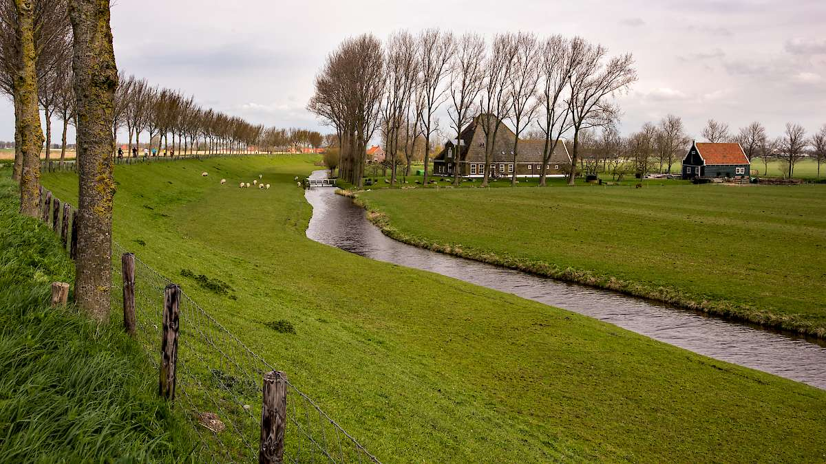 Cycling the beemster polder