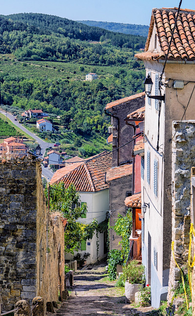 Scenic views in Motovun, Istria Peninsula, Croatia. Flickr:Arnie Papp