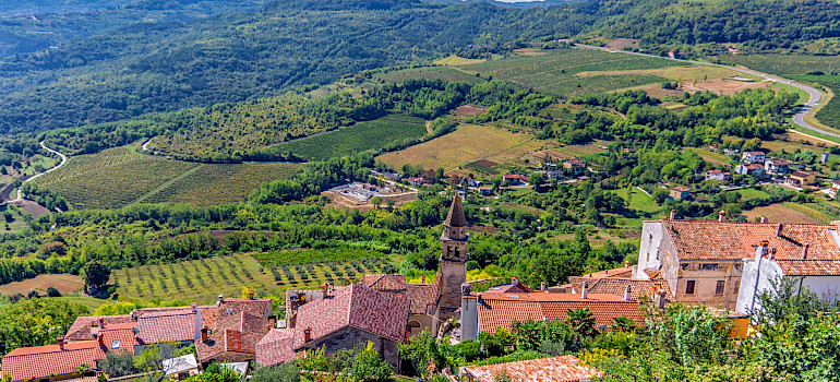 Vineyards surrounding Motovun on the Istria Peninsula, Croatia. Photo via Flickr:Arnie Papp