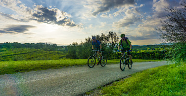Biking past vineyards in Istria to the Adriatic through Italy, Slovenia and Croatia. Photo via TO.