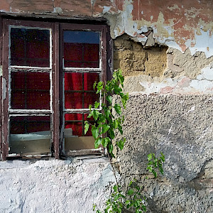 Just a lovely old window