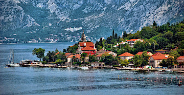 Dobrota on the Bay of Kotor, Montenegro. Photo via Flickr:Trish Hartmann