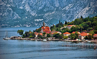 Dobrota on the Bay of Kotor, Montenegro. Flickr:Trish Hartmann