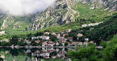 Dobrota on the Bay of Kotor in Montenegro. Flickr:Jocelyn Erskine-Kellie