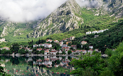 Dobrota on the Bay of Kotor in Montenegro. Flickr:Jocelyn Erskine-Kellie