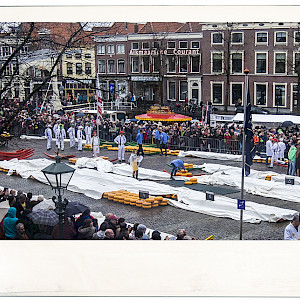 Alkmaar Cheese Action Crowd