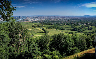 View of Vienna from Kahlenberg, Austria along the Danube River. Flickr:Oleg Brovko