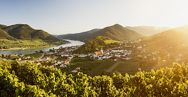Spitz on the Danube, Wachau Valley, Krems-Land, Lower Austria bike tour. Photo courtesy of Radundreisen-Eurocycle