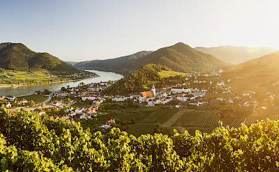 Spitz on the Danube, Wachau Valley, Krems-Land, Lower Austria bike tour. ©TO