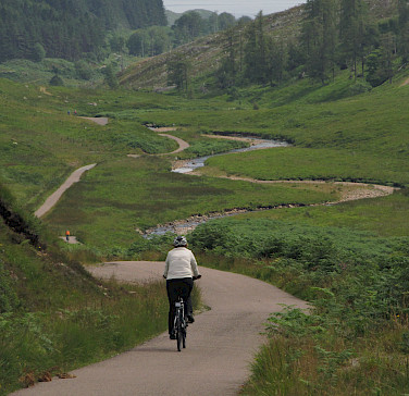 Scenic bike paths through Irish countryside. Photo courtesy of Tour Operator