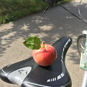 Apple on a bike