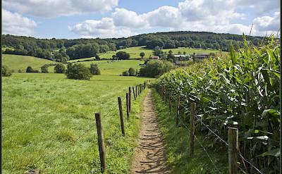 Quiet countryside in Epen, South Limburg, the Netherlands. Flickr:Bert Kaufmann