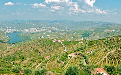 Great pano of the Douro River Valley and all its vineyards. Flickr:Francois Philipp