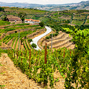 Douro Valley Wine and E-Bike Tour Photo