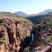 Passeio de bicicleta e safari na África do Sul Foto