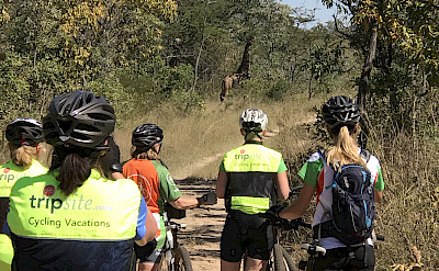 Hennie and crew biking through the private reserves.