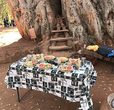 Local delicacies for lunch next to an old baobab tree!