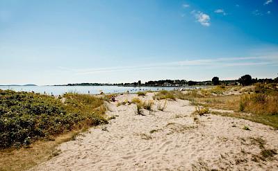 From bike to beach on the Oslofjord tour. Photo courtesy of Merlot Reiser
