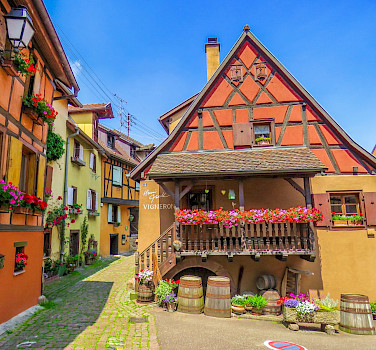 Alsace - Colmar and Osthouse