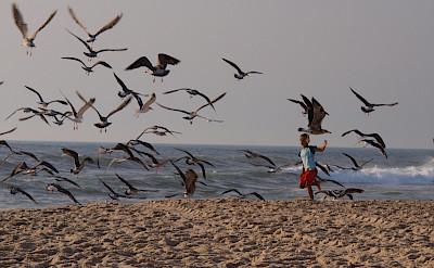 Bike to beach in Praia de Mira, Portugal. Flickr:Oleg