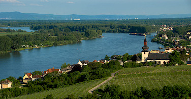 Nierstein on the Rhine River in Rheinland-Pfalz, Germany. Photo via Flickr:Marco Verch