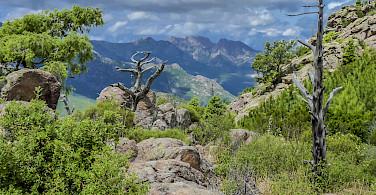 Lush mountainous interiors near Calvi on Corsica Island. Photo via Flickr:dawed bonz