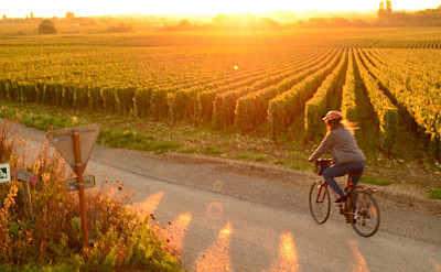 Enjoying the sunset in Burgundy, France.