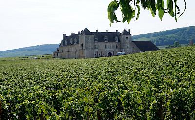 Château du Clos de Vougeot in Vougeot, department Côte-d'Or, Burgundy, France. Flickr:Pierre Andre Leclercq