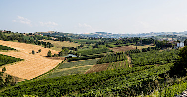 Castelvetro di Modena's countryside, Emilia-Romagna, Italy. Photo via Flickr:Bill Stilwell