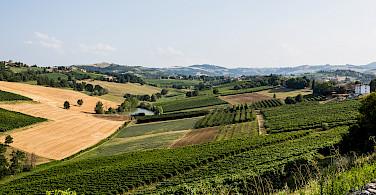 Castelvetro di Modena's countryside, Emilia-Romagna, Italy. Photo via Flickr:Bill Stilwell